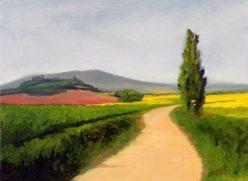 Camino sin Caminante